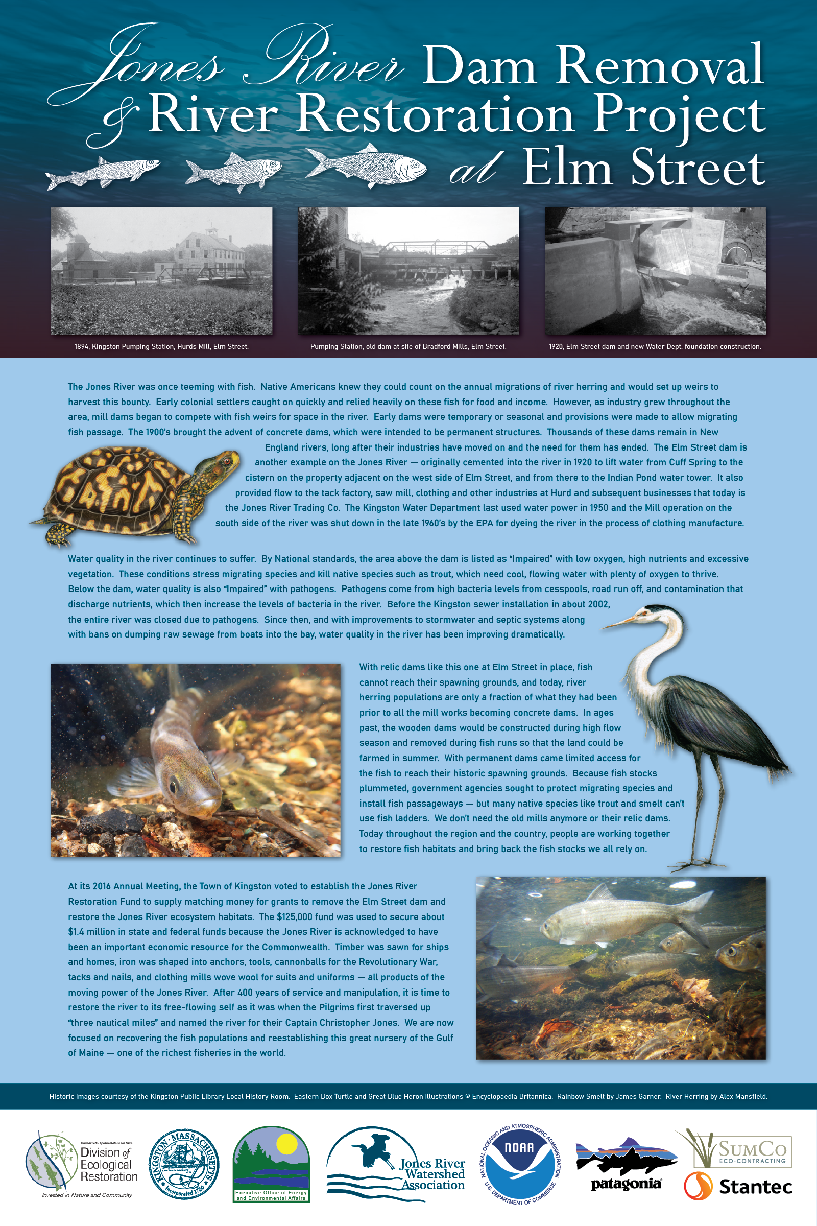 Poster - Elm Street Dam Removal and River Restoration Project