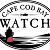 Cape Cod Bay Watch
