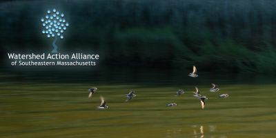 Watershed Action Alliance